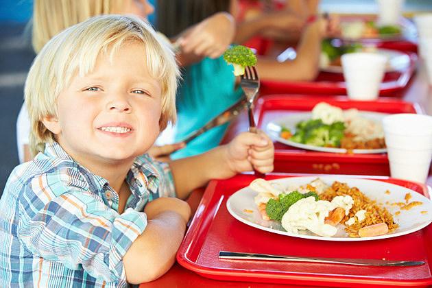 Bozeman School Lunch Information