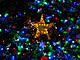 Solar Powered Christmas Tree Lights Up Brisbane