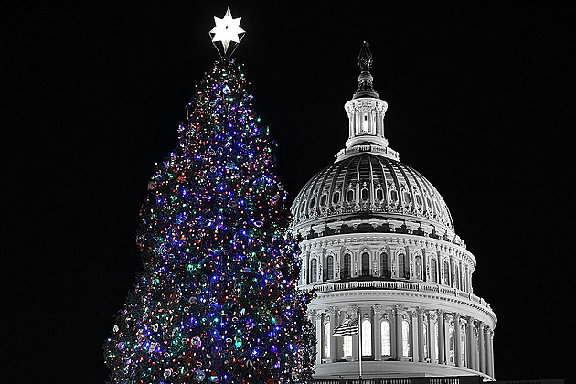 John Boehner Lights Capitol Christmas Tree At Ceremony