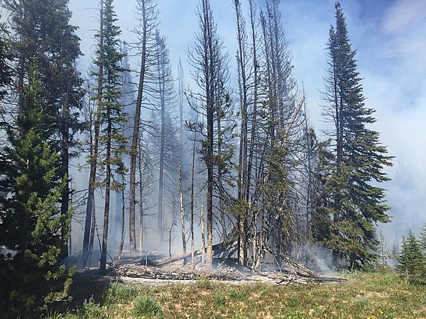 Fire South Of Big Sky Burns Near Yellowstone Np